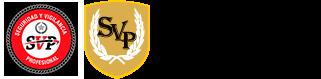 logotipo-grupo-sevipar